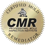 state certified mold remediation