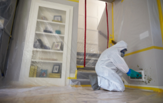 safety equipment for mold remediation